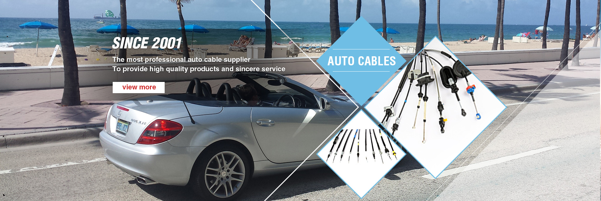 Professional Auto Cable Supplier